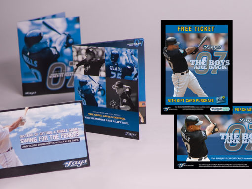 Baseball Campaign Ticket Sales Direct Mailer Brochures