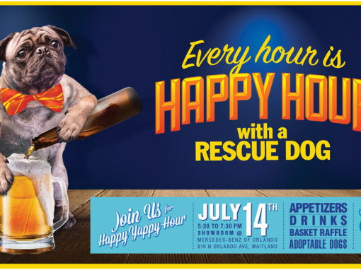 Dog Rescue Photo Illustration and Banner Design Happy Hour