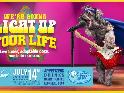Dog Rescue Photo Illustration and Banner Design Musician Dog