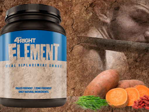 Meal Replacement Paleo Protein Shake Packaging Design
